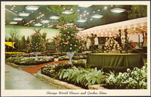 Photograph postcard of the Chicago World Flower & Garden Show from 1965.